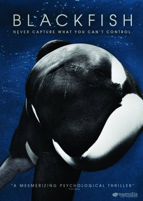 Blackfish - definitely one to watch