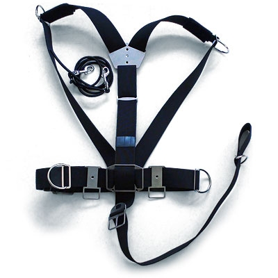 razor-harness