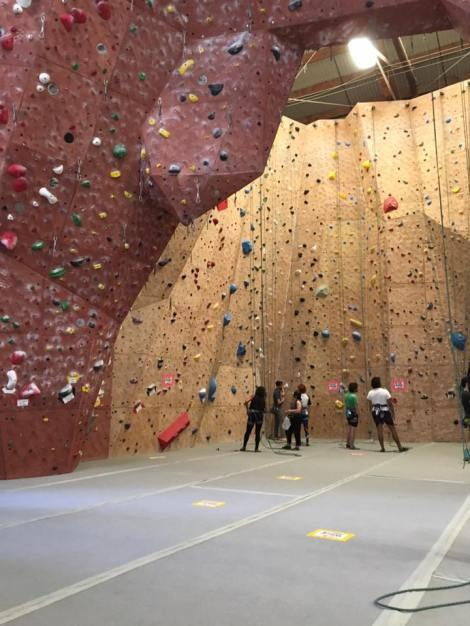 One of the many climbing walls